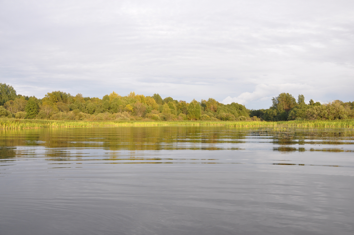 Семейный отдых на озере Вселуг